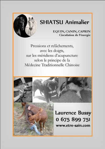 Fly shiatsu animalier recto